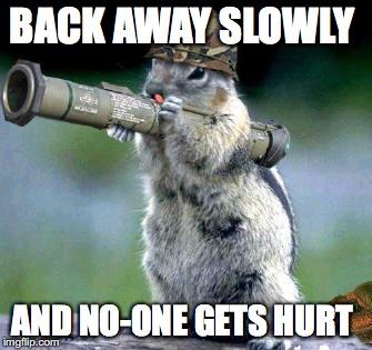 1enttg bazooka squirrel meme imgflip