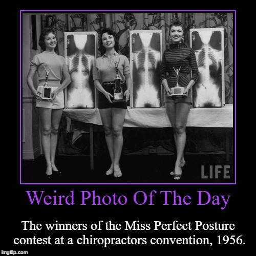 Not Sure If Anyone Really Care About Posture Nowadays... | Weird Photo Of The Day | The winners of the Miss Perfect Posture contest at a chiropractors convention, 1956. | image tagged in funny,demotivationals,weird,photo of the day,miss perfect posture contest,chiropractor | made w/ Imgflip demotivational maker