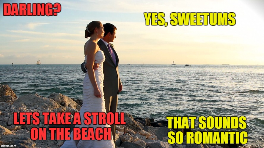 DARLING? THAT SOUNDS SO ROMANTIC YES, SWEETUMS LETS TAKE A STROLL ON THE BEACH | made w/ Imgflip meme maker