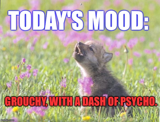 baby insanity wolf meme - photo #12