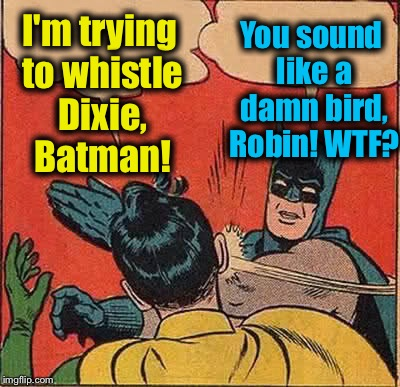 Batman Slapping Robin | I'm trying to whistle Dixie, Batman! You sound like a damn bird, Robin! WTF? | image tagged in memes,batman slapping robin,evilmandoevil,funny,dixie | made w/ Imgflip meme maker