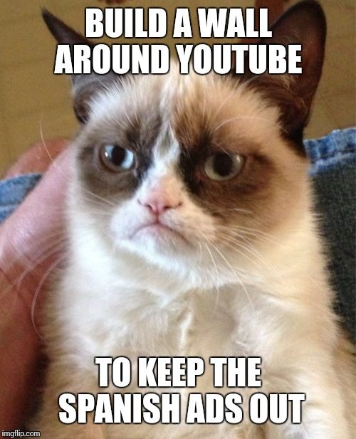 Grumpy Cat Meme | BUILD A WALL AROUND YOUTUBE TO KEEP THE SPANISH ADS OUT | image tagged in memes,grumpy cat | made w/ Imgflip meme maker