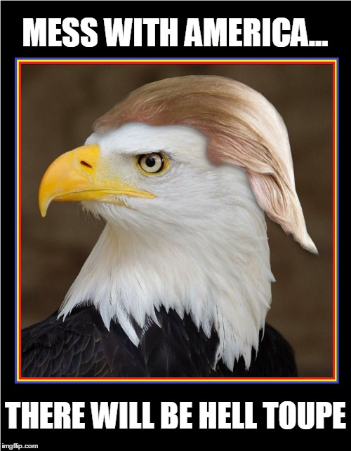 The American (Formerly) Bald Eagle | MESS WITH AMERICA... THERE WILL BE HELL TOUPE | image tagged in vince vance,donald trump,45th president of the united states,american bald eagle with a wig,symbol of america,america first | made w/ Imgflip meme maker