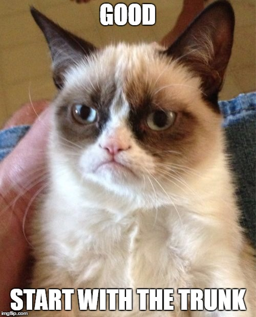 Grumpy Cat Meme | GOOD START WITH THE TRUNK | image tagged in memes,grumpy cat | made w/ Imgflip meme maker
