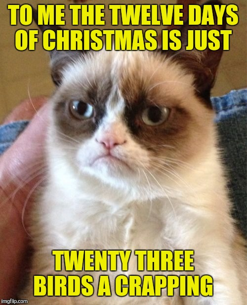 Twelve days and not a single cat! | TO ME THE TWELVE DAYS OF CHRISTMAS IS JUST TWENTY THREE BIRDS A CRAPPING | image tagged in memes,grumpy cat,twelve days of christmas,bird crap | made w/ Imgflip meme maker