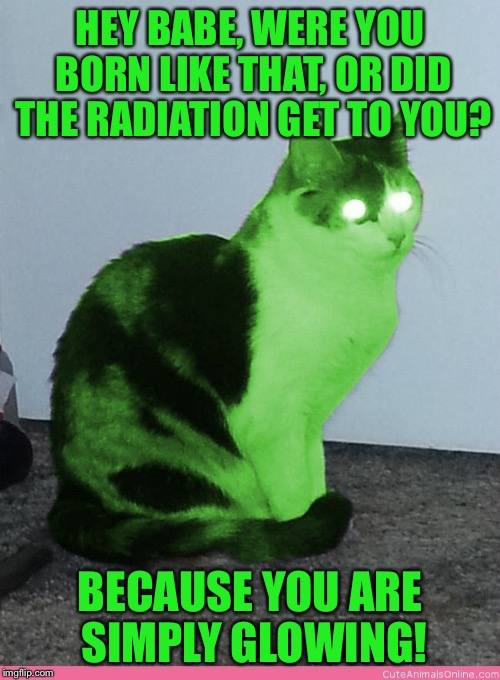 RayCat's pickup lines | HEY BABE, WERE YOU BORN LIKE THAT, OR DID THE RADIATION GET TO YOU? BECAUSE YOU ARE SIMPLY GLOWING! | image tagged in hypno raycat,memes | made w/ Imgflip meme maker