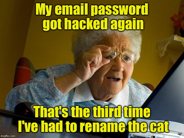 Grandma Finds The Internet Meme | My email password got hacked again That's the third time I've had to rename the cat | image tagged in memes,grandma finds the internet | made w/ Imgflip meme maker