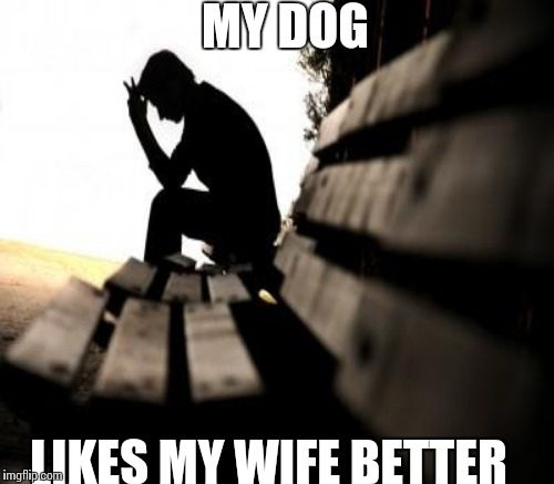 MY DOG LIKES MY WIFE BETTER | made w/ Imgflip meme maker