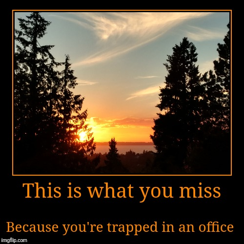 You're A Drone | This is what you miss | Because you're trapped in an office | image tagged in funny,demotivationals | made w/ Imgflip demotivational maker