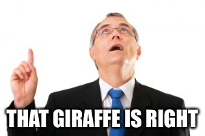 Man Pointing Up | THAT GIRAFFE IS RIGHT | image tagged in man pointing up | made w/ Imgflip meme maker