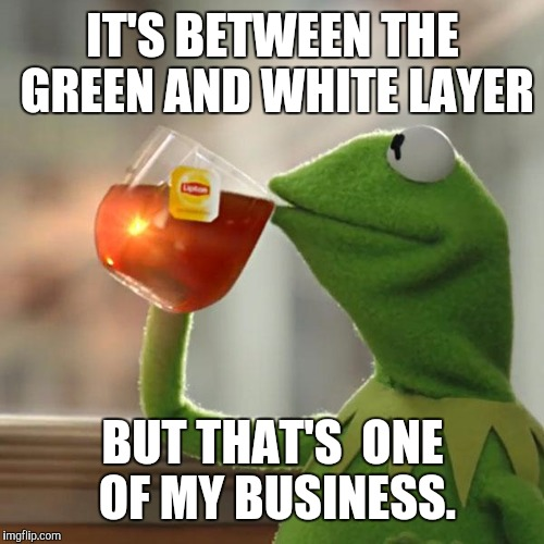 But That's None Of My Business Meme | IT'S BETWEEN THE GREEN AND WHITE LAYER BUT THAT'S  ONE OF MY BUSINESS. | image tagged in memes,but thats none of my business,kermit the frog | made w/ Imgflip meme maker
