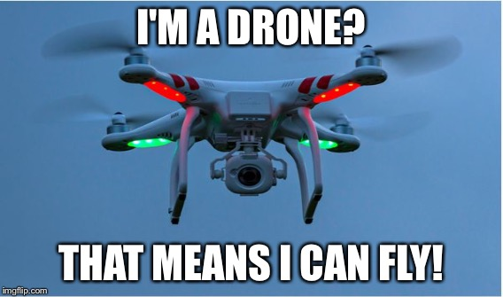 I'M A DRONE? THAT MEANS I CAN FLY! | made w/ Imgflip meme maker