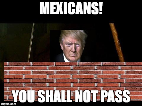 You shall not pass |  MEXICANS! YOU SHALL NOT PASS | image tagged in you shall not pass | made w/ Imgflip meme maker