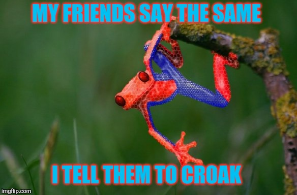MY FRIENDS SAY THE SAME I TELL THEM TO CROAK | made w/ Imgflip meme maker