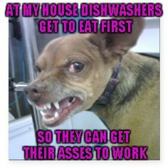 AT MY HOUSE DISHWASHERS GET TO EAT FIRST SO THEY CAN GET THEIR ASSES TO WORK | made w/ Imgflip meme maker
