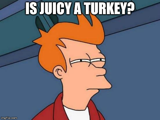 Futurama Fry Meme | IS JUICY A TURKEY? | image tagged in memes,futurama fry | made w/ Imgflip meme maker