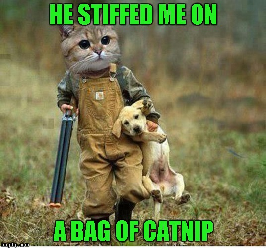HE STIFFED ME ON A BAG OF CATNIP | made w/ Imgflip meme maker