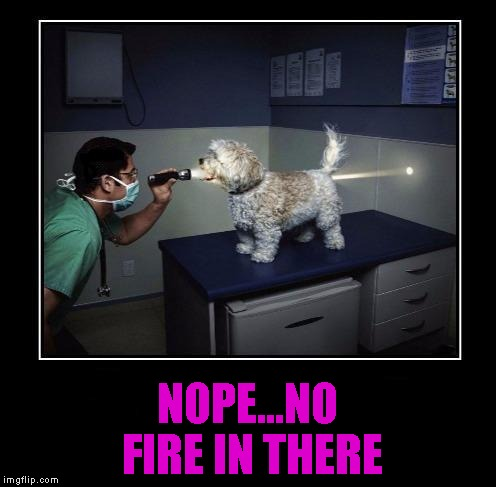 NOPE...NO FIRE IN THERE | made w/ Imgflip meme maker