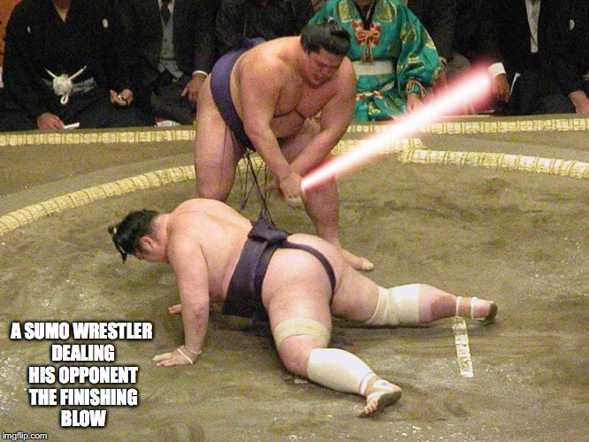 Sumo Wrestling | A SUMO WRESTLER DEALING HIS OPPONENT THE FINISHING BLOW | image tagged in sumo,memes | made w/ Imgflip meme maker