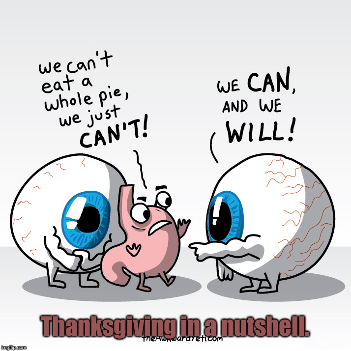 Your Eyes Say Yes, But Your Stomach Is Saying No! | Thanksgiving in a nutshell. | image tagged in memes,thanksgiving,funny,stomach,eyes,nutshell | made w/ Imgflip meme maker