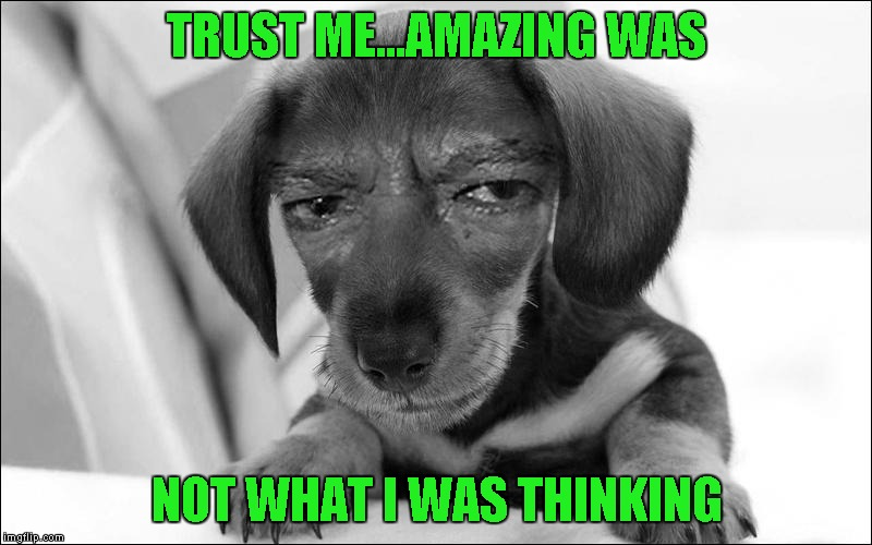 TRUST ME...AMAZING WAS NOT WHAT I WAS THINKING | made w/ Imgflip meme maker