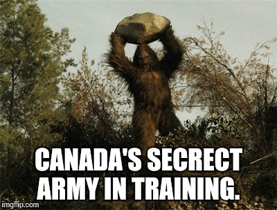 Canada is training a secrect army to repel invaders from the south | CANADA'S SECRECT ARMY IN TRAINING. | image tagged in bigfoot,memes,funny,canada | made w/ Imgflip meme maker