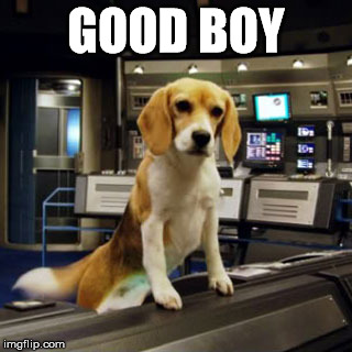 Captain Archer's Beagle Porthos | GOOD BOY | image tagged in captain archer's beagle porthos | made w/ Imgflip meme maker