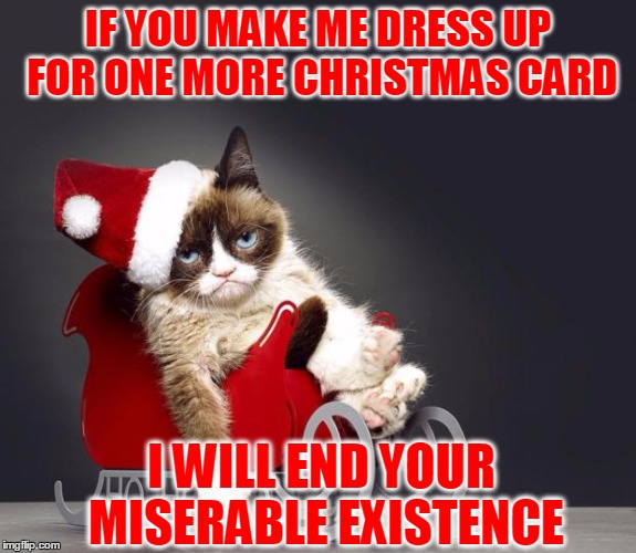 Bah Humbug | IF YOU MAKE ME DRESS UP FOR ONE MORE CHRISTMAS CARD I WILL END YOUR MISERABLE EXISTENCE | image tagged in grumpy cat christmas hd,christmas card,i will end you,is grumpy hiding the clue | made w/ Imgflip meme maker