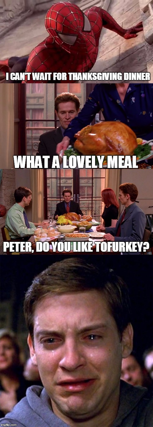 Tofurkey For Thanksgiving!? You Are Dead To Me | I CAN'T WAIT FOR THANKSGIVING DINNER WHAT A LOVELY MEAL PETER, DO YOU LIKE TOFURKEY? | image tagged in spiderman thanksgiving,thanksgiving,thanksgiving dinner,tofurkey,sad spiderman | made w/ Imgflip meme maker