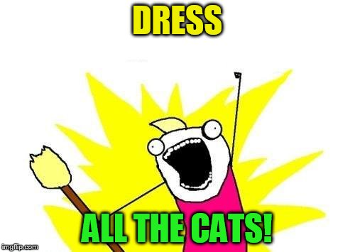 X All The Y Meme | DRESS ALL THE CATS! | image tagged in memes,x all the y | made w/ Imgflip meme maker