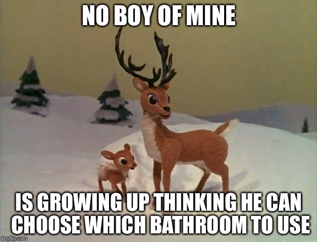 NO BOY OF MINE IS GROWING UP THINKING HE CAN CHOOSE WHICH BATHROOM TO USE | image tagged in rudolph,memes | made w/ Imgflip meme maker