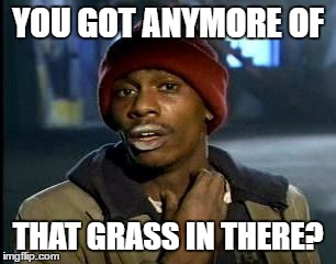 Y'all Got Any More Of That Meme | YOU GOT ANYMORE OF THAT GRASS IN THERE? | image tagged in memes,yall got any more of | made w/ Imgflip meme maker
