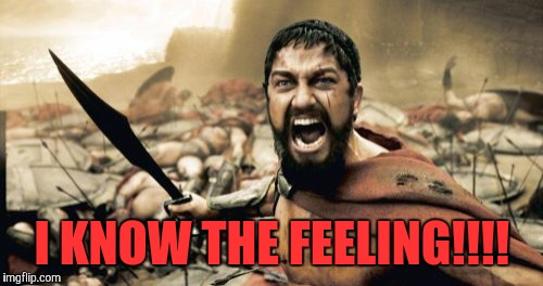 I KNOW THE FEELING!!!! | image tagged in memes,sparta leonidas | made w/ Imgflip meme maker
