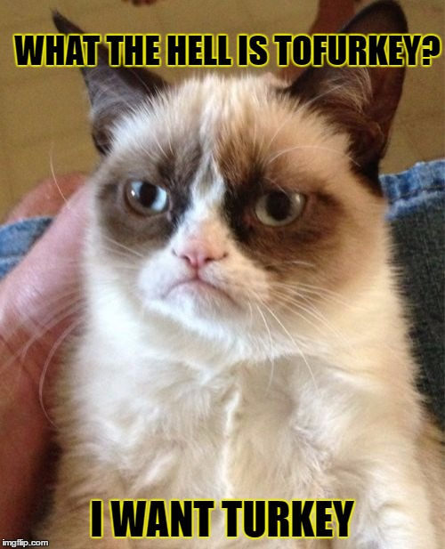 Grumpy Cat Meme | WHAT THE HELL IS TOFURKEY? I WANT TURKEY | image tagged in memes,grumpy cat | made w/ Imgflip meme maker