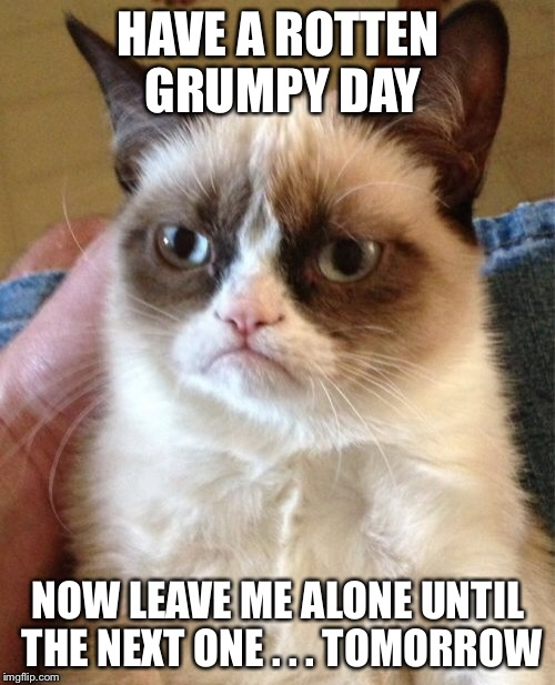 Grumpy Cat Meme | HAVE A ROTTEN GRUMPY DAY NOW LEAVE ME ALONE UNTIL THE NEXT ONE . . . TOMORROW | image tagged in memes,grumpy cat | made w/ Imgflip meme maker