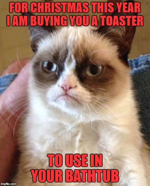 Grumpy Cat Meme | FOR CHRISTMAS THIS YEAR I AM BUYING YOU A TOASTER TO USE IN YOUR BATHTUB | image tagged in memes,grumpy cat | made w/ Imgflip meme maker