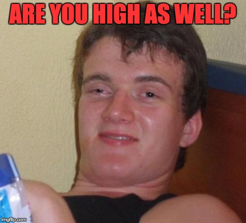 10 Guy Meme | ARE YOU HIGH AS WELL? | image tagged in memes,10 guy | made w/ Imgflip meme maker