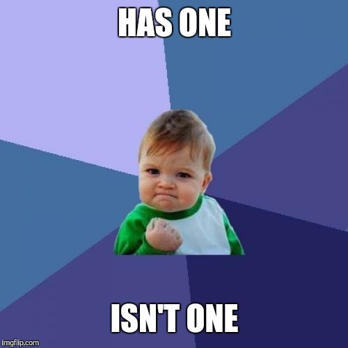 Success Kid Meme | HAS ONE ISN'T ONE | image tagged in memes,success kid | made w/ Imgflip meme maker
