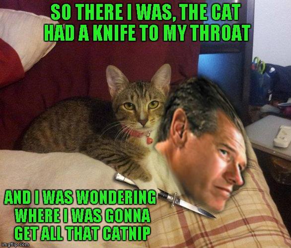 Brian Williams WAS there... Don't ask, just trying to learn how to photoshop...LOL | SO THERE I WAS, THE CAT HAD A KNIFE TO MY THROAT AND I WAS WONDERING WHERE I WAS GONNA GET ALL THAT CATNIP | image tagged in cat brian williams  knife,memes,brian williams was there,funny,bad photoshop,never said it was good photoshop | made w/ Imgflip meme maker