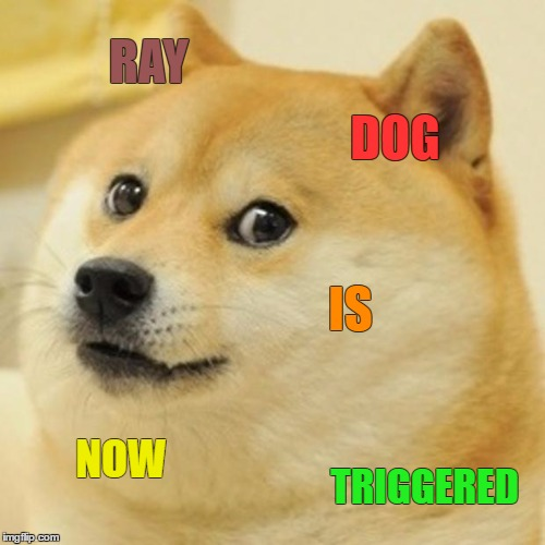 Doge Meme | RAY DOG IS NOW TRIGGERED | image tagged in memes,doge | made w/ Imgflip meme maker