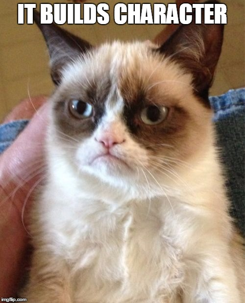 Grumpy Cat Meme | IT BUILDS CHARACTER | image tagged in memes,grumpy cat | made w/ Imgflip meme maker