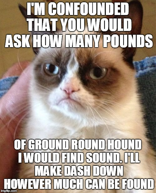 Grumpy Cat Meme | I'M CONFOUNDED THAT YOU WOULD ASK HOW MANY POUNDS OF GROUND ROUND HOUND I WOULD FIND SOUND. I'LL MAKE DASH DOWN HOWEVER MUCH CAN BE FOUND | image tagged in memes,grumpy cat | made w/ Imgflip meme maker