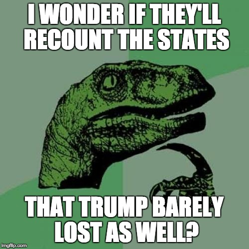 Philosoraptor Meme | I WONDER IF THEY'LL RECOUNT THE STATES THAT TRUMP BARELY LOST AS WELL? | image tagged in memes,philosoraptor | made w/ Imgflip meme maker