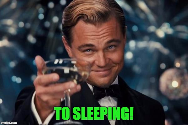 Leonardo Dicaprio Cheers Meme | TO SLEEPING! | image tagged in memes,leonardo dicaprio cheers | made w/ Imgflip meme maker