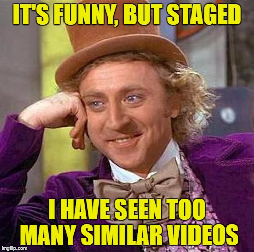 Creepy Condescending Wonka Meme | IT'S FUNNY, BUT STAGED I HAVE SEEN TOO MANY SIMILAR VIDEOS | image tagged in memes,creepy condescending wonka | made w/ Imgflip meme maker