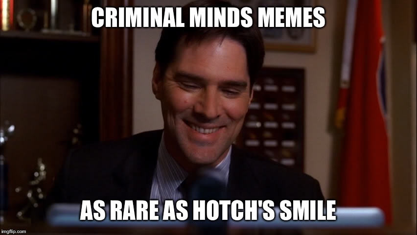 Hotch Smile | CRIMINAL MINDS MEMES AS RARE AS HOTCH'S SMILE | image tagged in funny,criminal minds | made w/ Imgflip meme maker