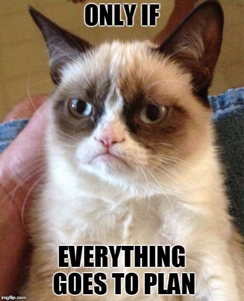 Grumpy Cat Meme | ONLY IF EVERYTHING GOES TO PLAN | image tagged in memes,grumpy cat | made w/ Imgflip meme maker