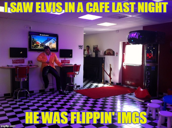 imgflip Elvis | I SAW ELVIS IN A CAFE LAST NIGHT HE WAS FLIPPIN' IMGS | image tagged in elvis,imgflip,cafe,meme | made w/ Imgflip meme maker