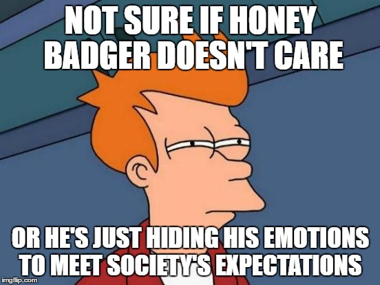 Fry cares |  NOT SURE IF HONEY BADGER DOESN'T CARE; OR HE'S JUST HIDING HIS EMOTIONS TO MEET SOCIETY'S EXPECTATIONS | image tagged in memes,futurama fry,honey badger,funny memes,funny meme | made w/ Imgflip meme maker