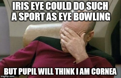 Captain Picard Facepalm Meme | IRIS EYE COULD DO SUCH A SPORT AS EYE BOWLING BUT PUPIL WILL THINK I AM CORNEA | image tagged in memes,captain picard facepalm | made w/ Imgflip meme maker